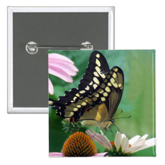Giant Swallowtail Butterfly on Flowers Pinback Buttons