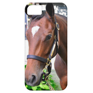 Giant's Causeway's Filly Case For The iPhone 5