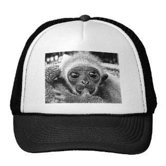 Gibbon Baby Cap