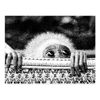 GibbonBaby Postcard