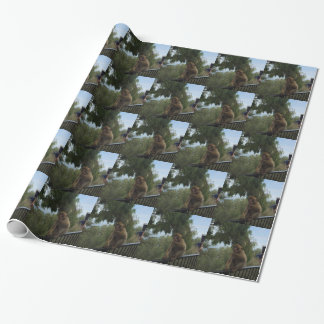 Gibraltar Caves St Michael's Cave Wrapping Paper