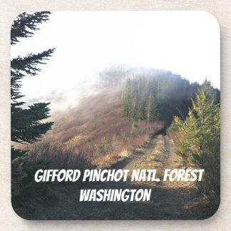 Gifford Pinchot National Forest, WA Coaster