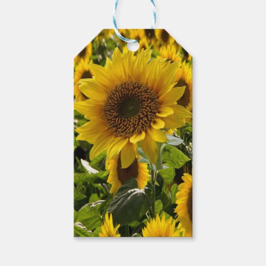 Gift Bags Sunflowers Gift Tags