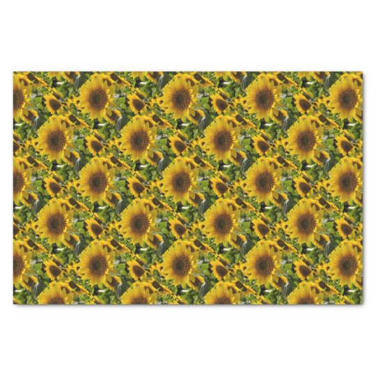 Gift Bags Sunflowers Tissue Paper