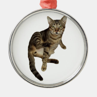 Gifts Charming Cat Metal Ornament