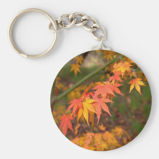 Gifts In Fall Colors Multiple Products Basic Round Button Key Ring