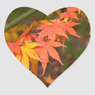 Gifts In Fall Colors Multiple Products Heart Sticker