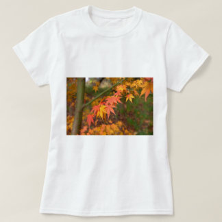 Gifts In Fall Colors Multiple Products T-Shirt