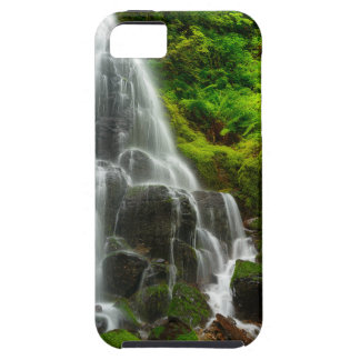 Gifts of Nature Forest Waterfall iPhone 5 Cases