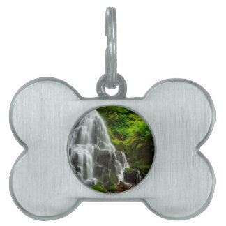 Gifts of Nature Forest Waterfall Pet Tag
