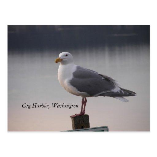 Gig Harbor Postcard
