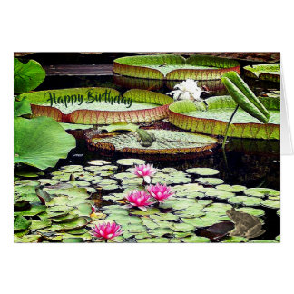 Gigantic Lily pads Card