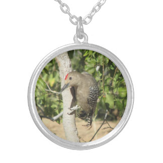 Gila Woodpecker Necklace