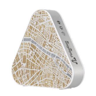 Gilded City Map Of Paris