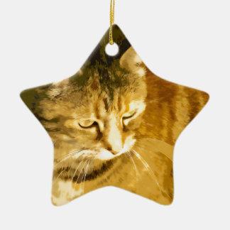 Ginger cat ceramic star decoration
