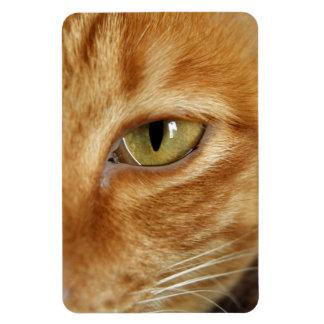 ginger cat flexible magnet