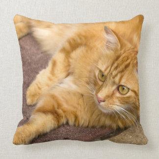 Ginger Cat Golden Eyes Throw Pillow
