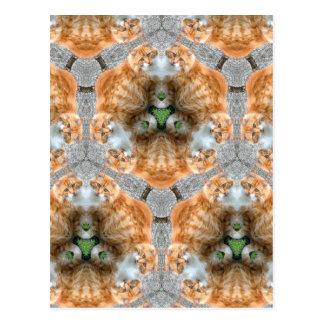 Ginger Cat Kaleidoscope Postcard