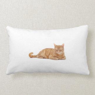Ginger cat lumbar pillow