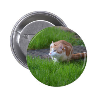 Ginger Cat Watching Badge