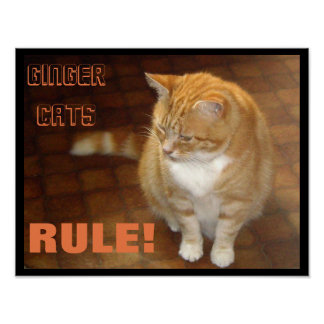 Ginger Cats Rule! Print