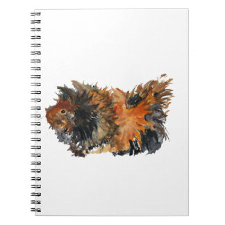 Ginger Fluffy Guinea Pig Watercolour Painting Notebook