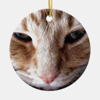 Ginger Kitten Ceramic Ornament