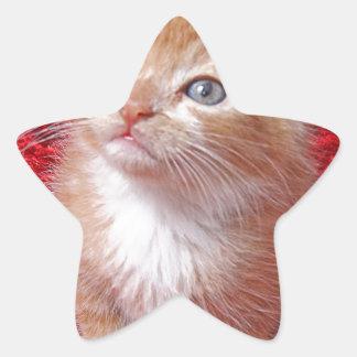 Ginger Kitten Star Sticker