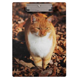 Ginger Tabby Cat Clipboard