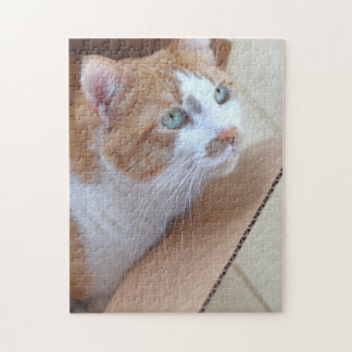 Ginger tabby in cardboard box jigsaw puzzle