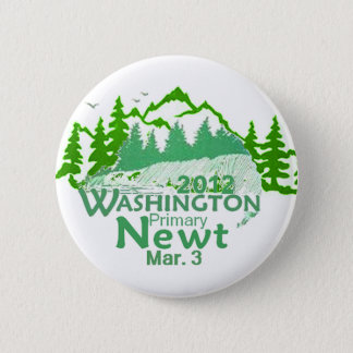 Gingrich Washington Button