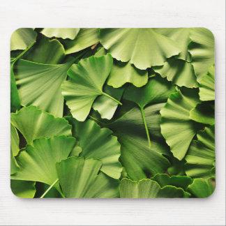ginkgo biloba tree leaf nature plant texture mouse pad