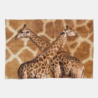 Giraffe 1A  Kitchen Towels