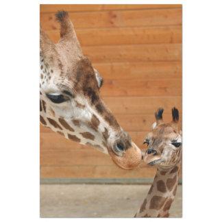 Giraffe_20151101_by_JAMFoto Tissue Paper