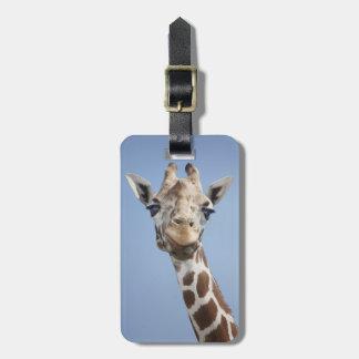 Giraffe 2 luggage tag