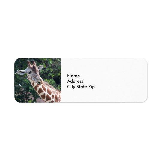 Giraffe 7031 return address label