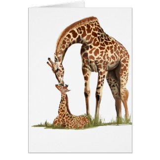 Giraffe and baby calf kissing card