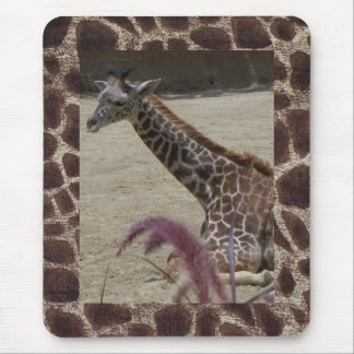 Giraffe at Rest Mouse Pad