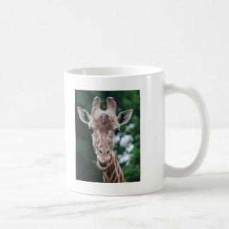 giraffe basic white mug
