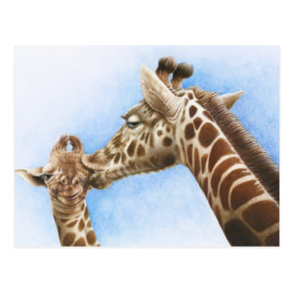 Giraffe & Calf Postcard