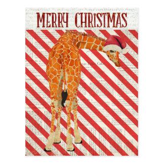Giraffe Candy Cane Postcard