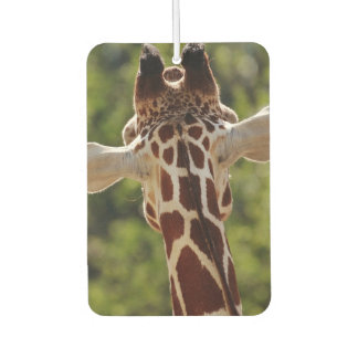 Giraffe Car Air Freshener
