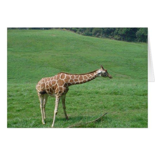 Giraffe Card! Card