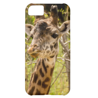 Giraffe Cover For iPhone 5C