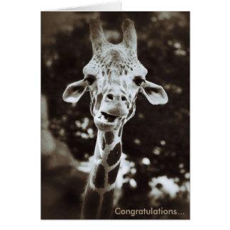 Giraffe Congratulations Greeting Card