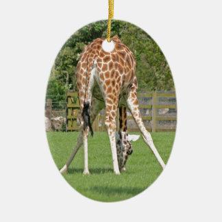 Giraffe Design Ceramic Oval Decoration