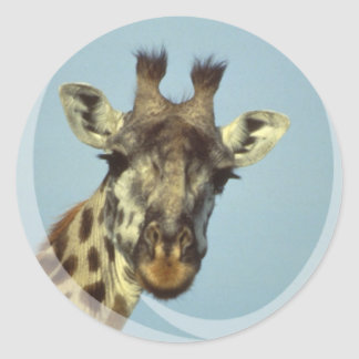 Giraffe Design  Stickers