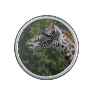 Giraffe Eating Speaker