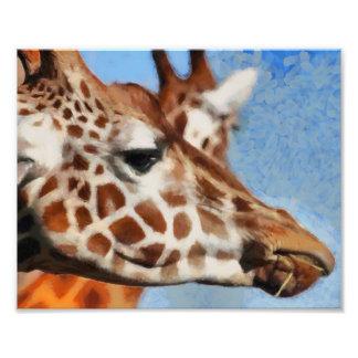 Giraffe eating its food photo print