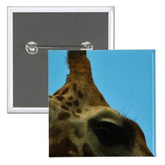 giraffe eye 15 cm square badge